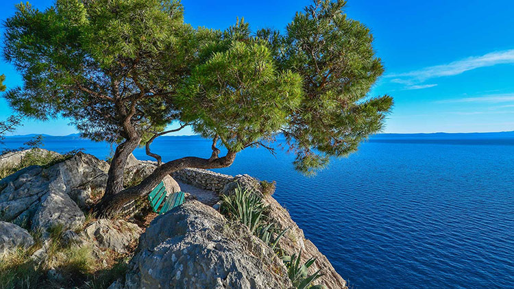 Makarska - Central Dalmatia Villa